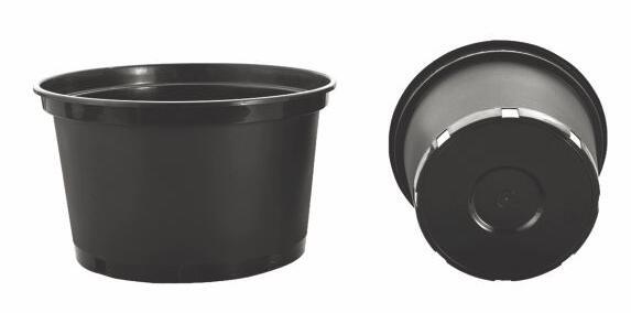 Gallon Flower Pots